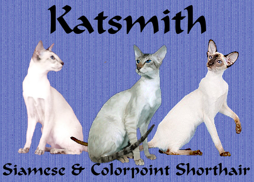 CH Katsmith Bicycle Built for Two, GC Elorac Across the Stars of Katsmith & GC, RW Mezetique Roxy of Katsmith, DM